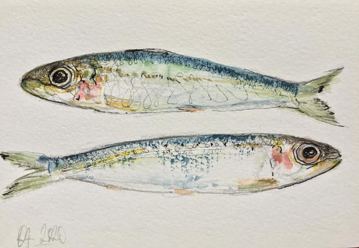 """""""Sardines"""" 
