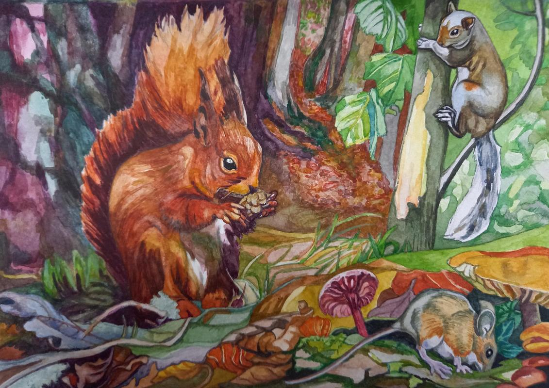 Creatures of the Forest, Watercolour, Unframed, 29.5x 21cm, £90