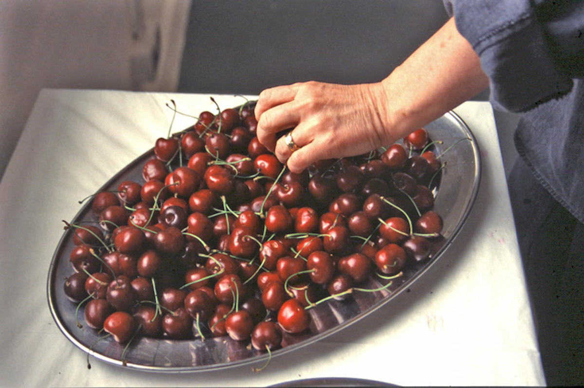 """Life is a bowl of cherries"" (2001) Selected artist at Openhand Openspace studios, Reading, a twelve week residency and show entitled just beyond OZ"
