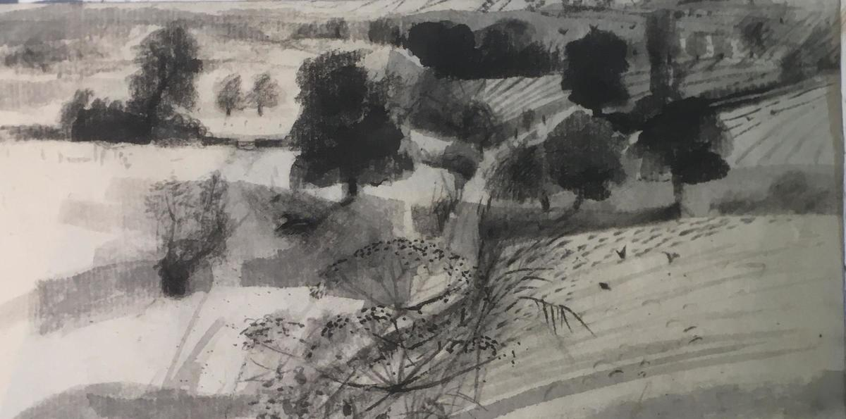 Footpath,summer- Charcoal and ink