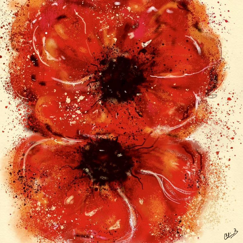 Poppies. Digital art print. 20x20cm