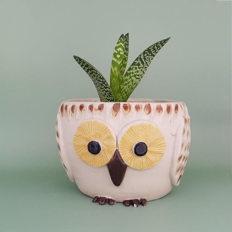 Owl plant pot. Earthenware ceramic. £25