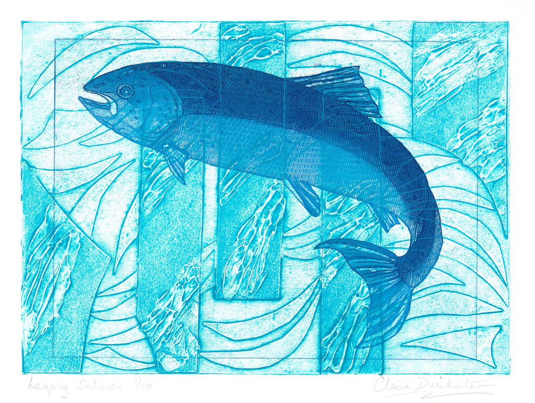 Leaping Salmon. Etching & collagraph 38 x 46cm £150