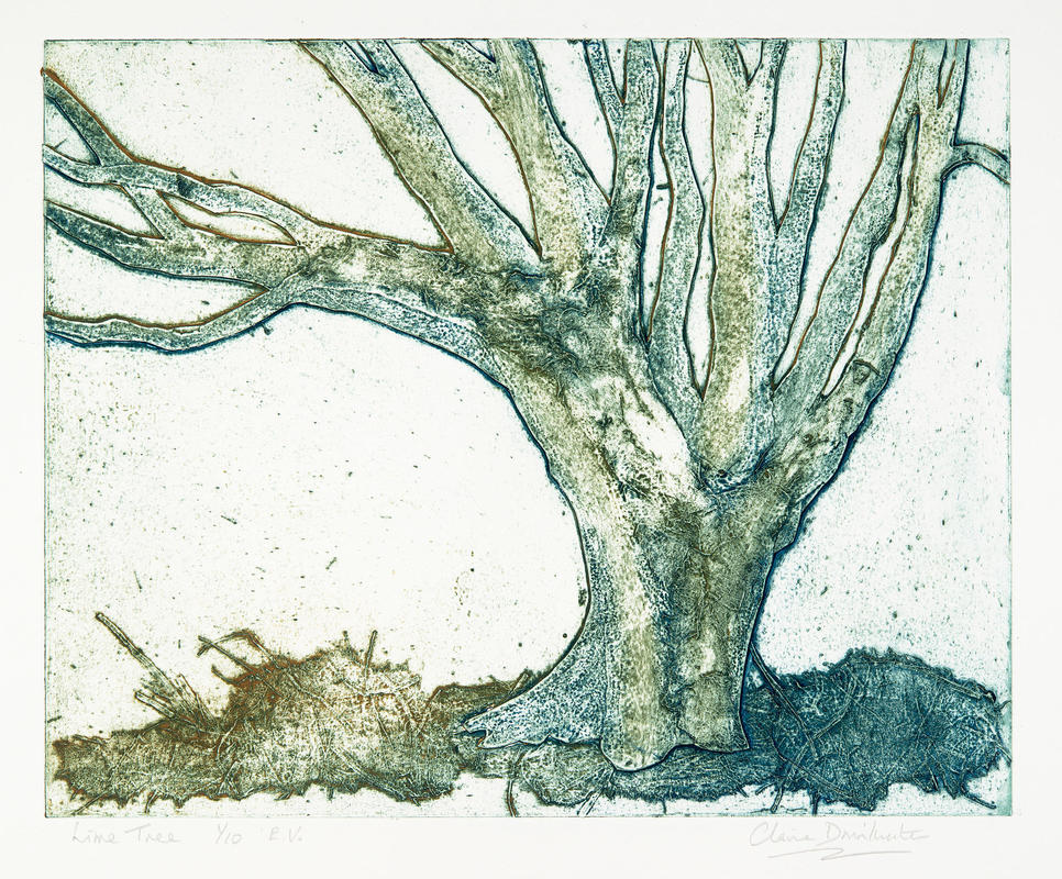 Lime Tree.  Collagraph  51 x 59cm  £195