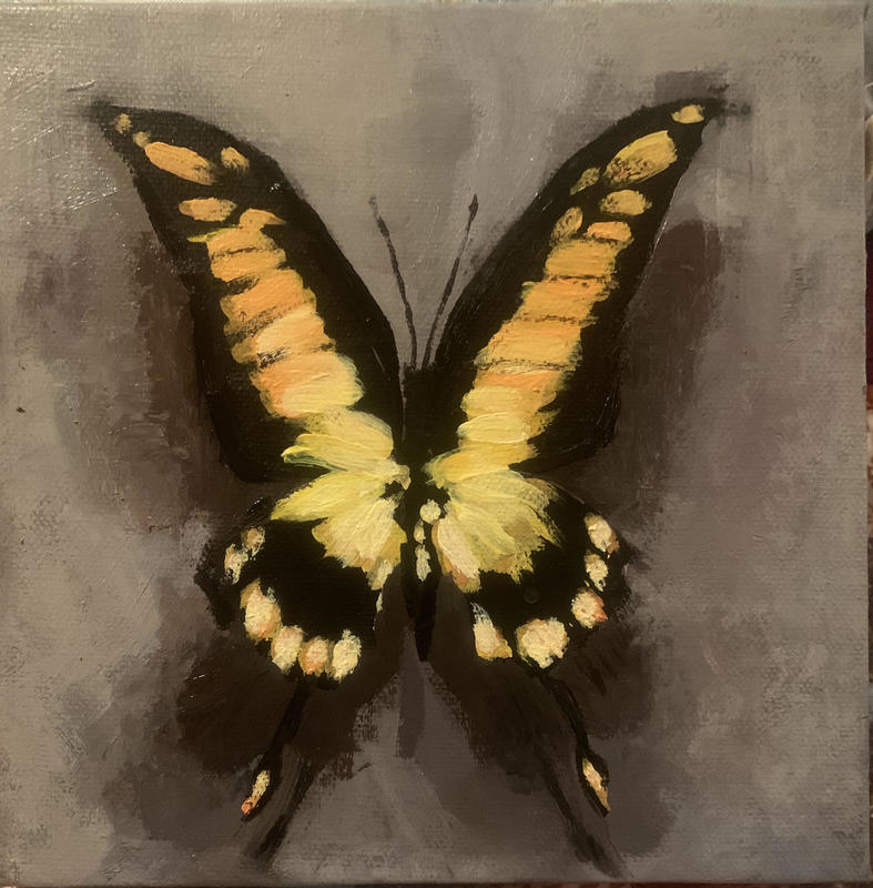 Butterfly II . Acrylic on stretched cotton canvas