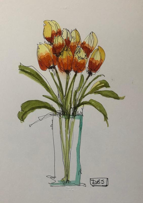 Tulips in pen and wash