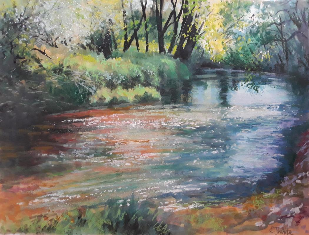 By the river Evenlode         pastel & inks  38 x 28cm           £185