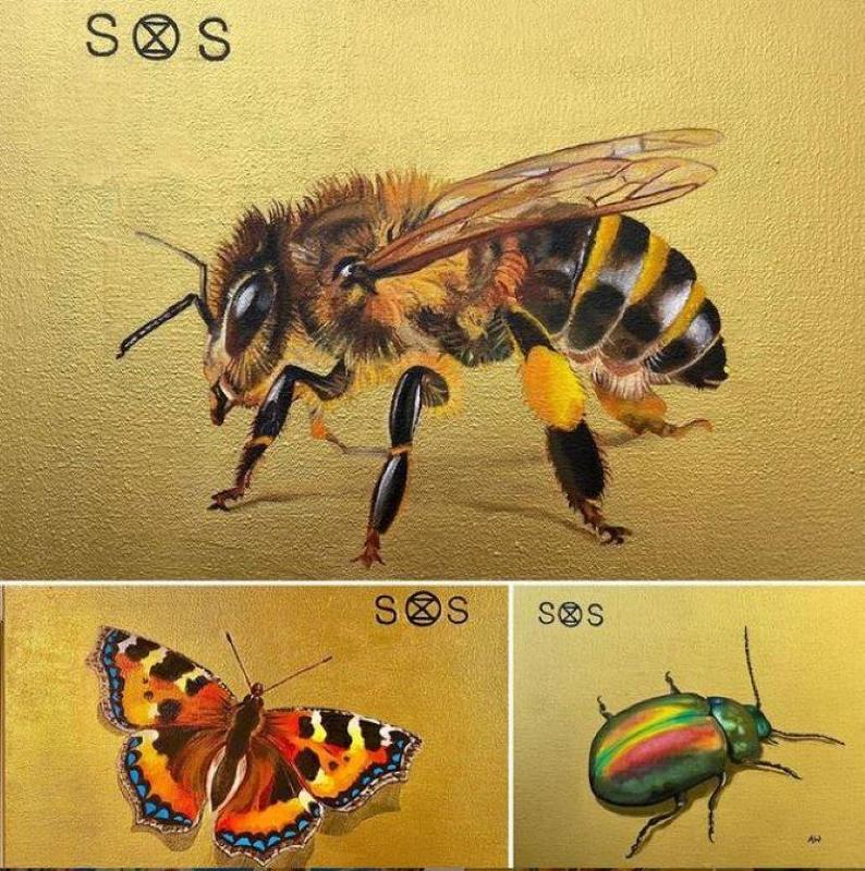 Endangered species:  a series of endangered insects and birds, oil on acrylic