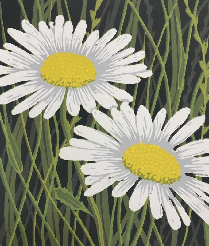 Ox-eye daisies, Linocut £30