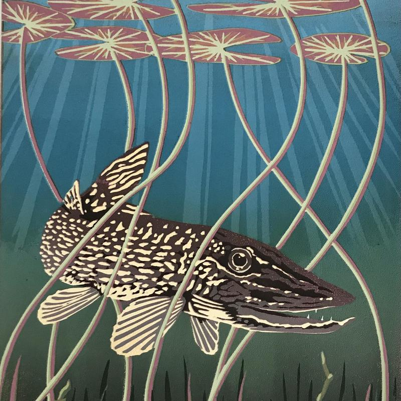 Pike amongst the water lilies, Linocut £55