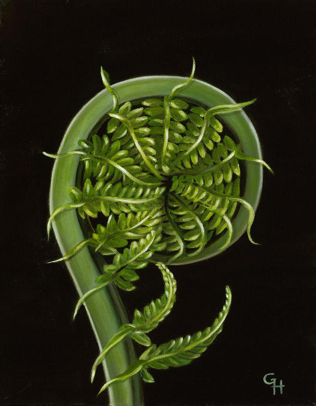 Spring Fern, oil on canvas, 24x30 cms, £80