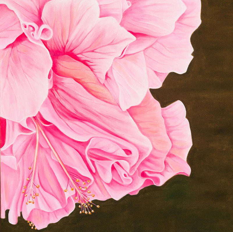 Hibiscus Flower, oil on canvas, 40x50cms, £180