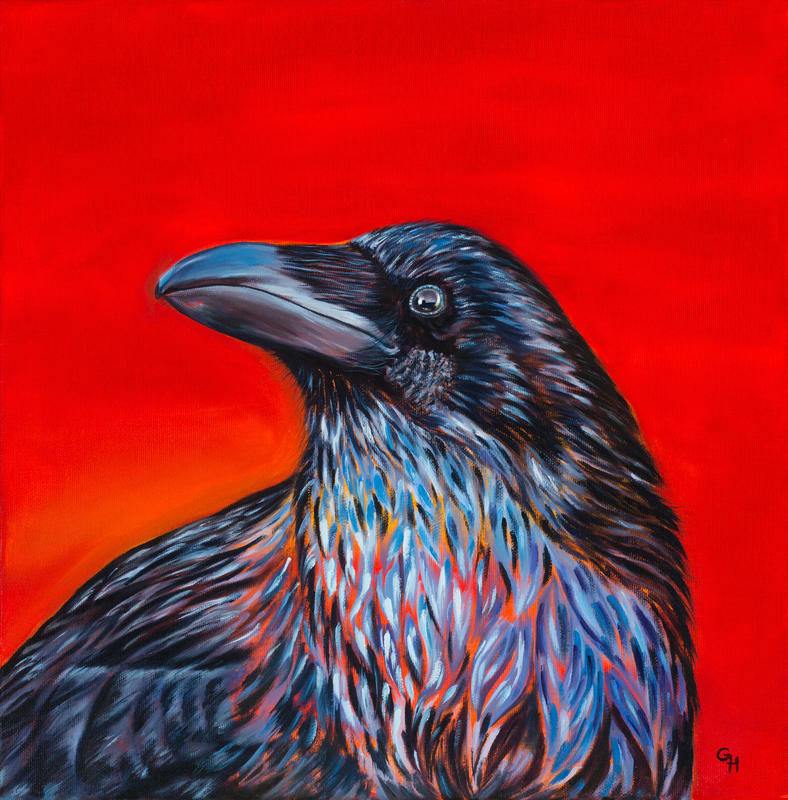 Raven 1, oil on canvas, 40x40cms, £120