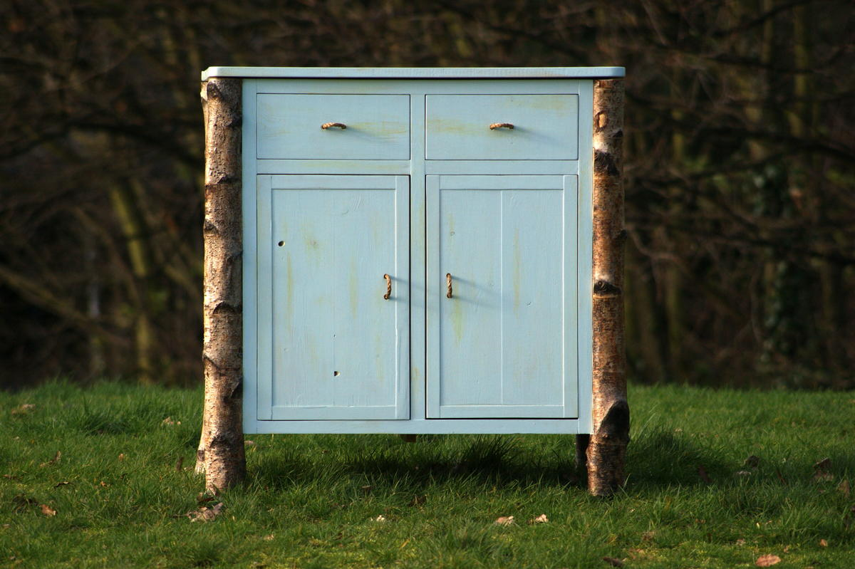 This cabinet is part of the project 'From the Roots up' , where trees in their untouched essence are part of the furniture