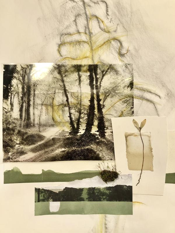 Early morning walk. Pastel drawing, digitised photograph, woodland finds. 45x60cms