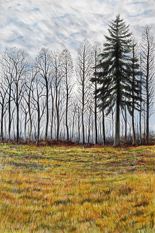 Winter trees, Bagley woods,  acrylic painting