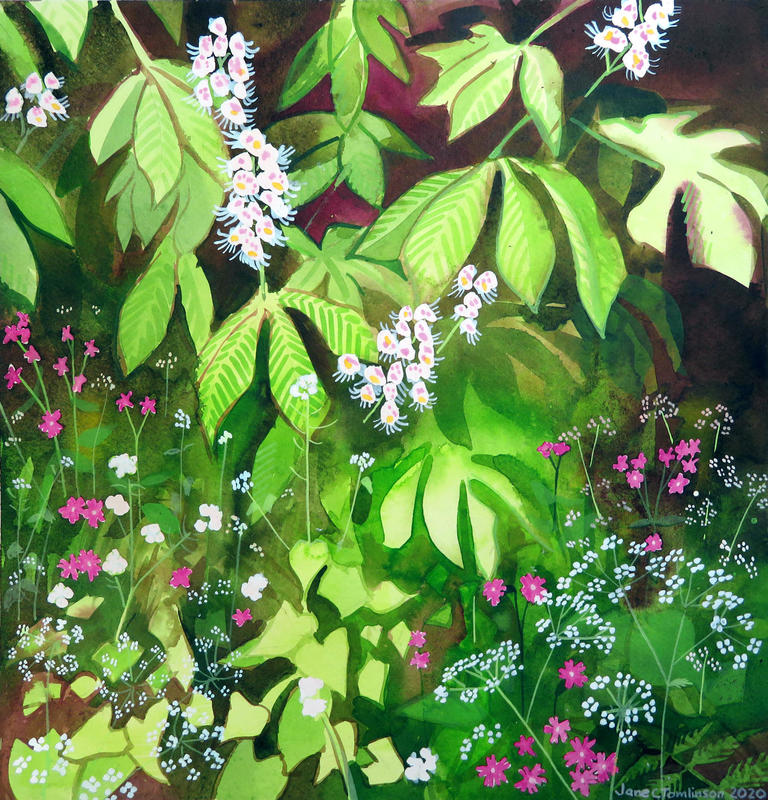 Horse Chestnut and Red Campion by Jane Tomlinson - watercolour & inks - size 363mm x 374mm - original £215