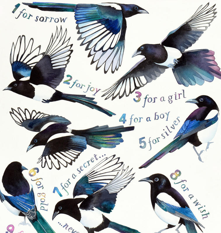 "Detail from ""Magpie Song"" by Jane Tomlinson - watercolour & inks - 420mm x 570mm - original £475, prints £36"