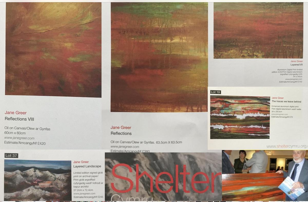 Paintings auctioned for Shelter