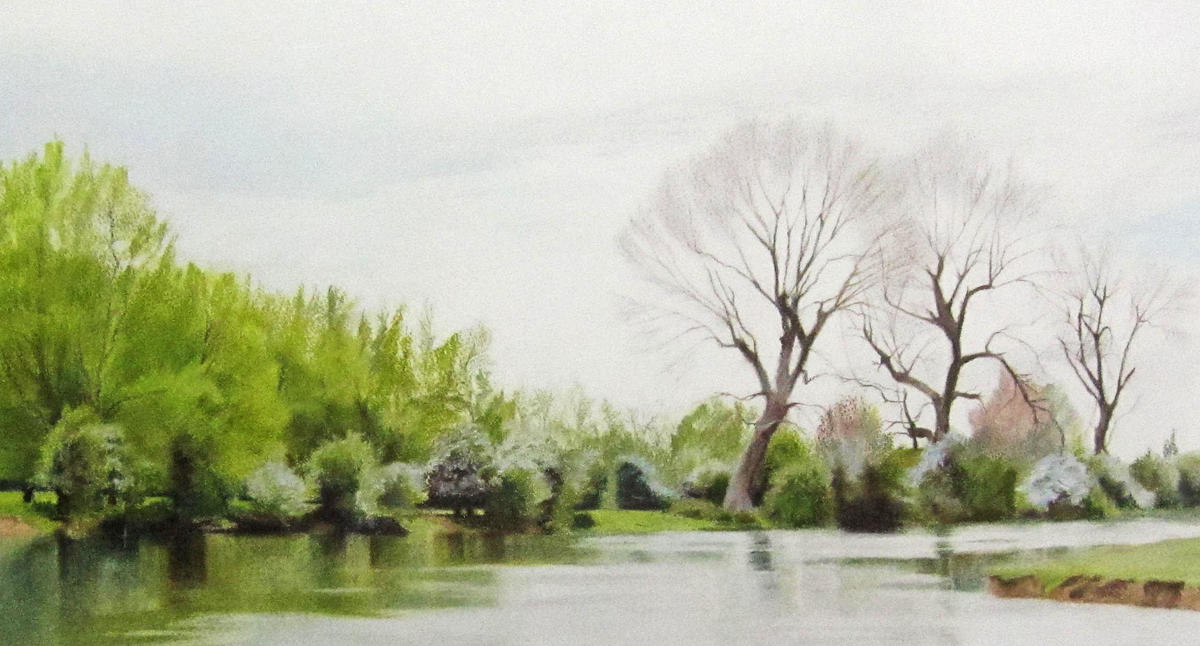 Spring comes to Binsey Reach, 51x87, £450