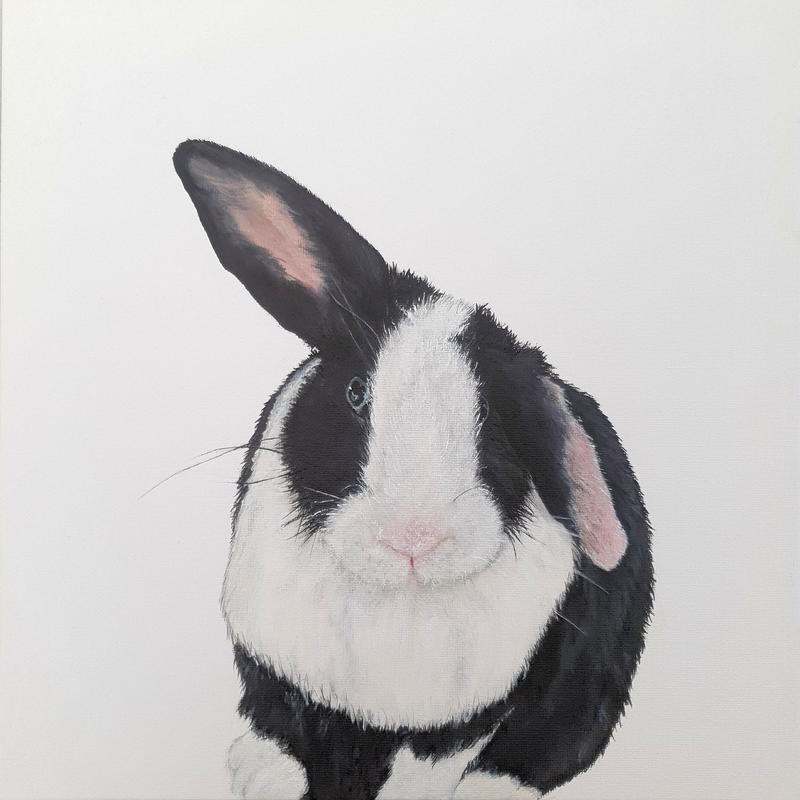 Betsy bluebell 12x12 inch acrylic on canvas.  it would be wrong of me to not have a pet portrait of my lovely assistant, Betsy.  Original painting £300, prints from £45, greetings cards £3.