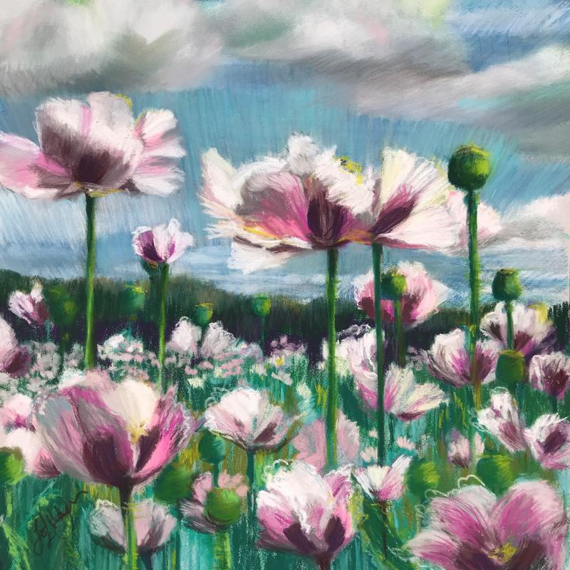 Jo Lillywhite 'Reach for the Skies' giclee print £65