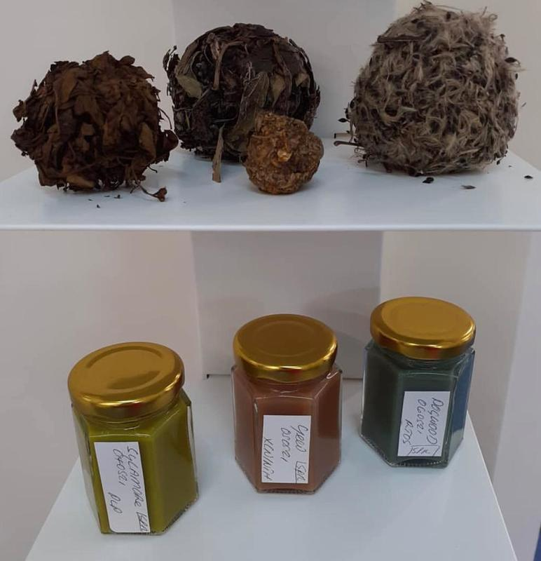 Pigment in Paste form and Plant Balls at ArtWeeks 2021