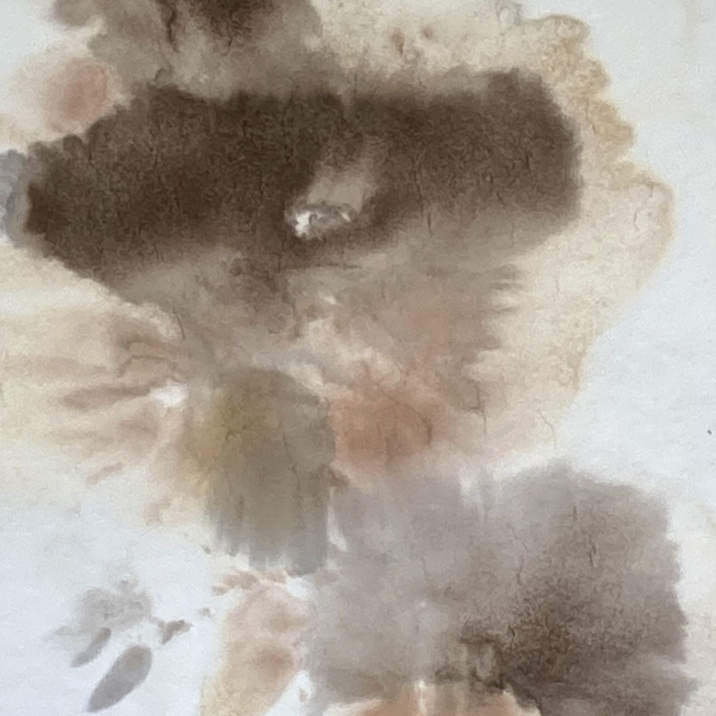 Close Up of Frozen Hedgerow Ink Process Painting 'Iceplosion'