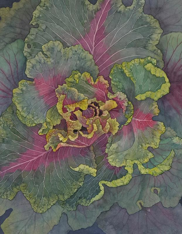 Ornamental Cabbage £275