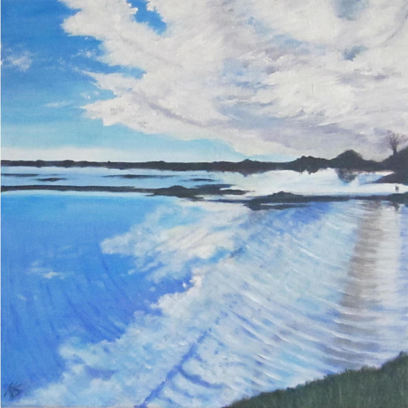 Port Meadow in flood - Oil on box canvas 50 x 50 cm - £250