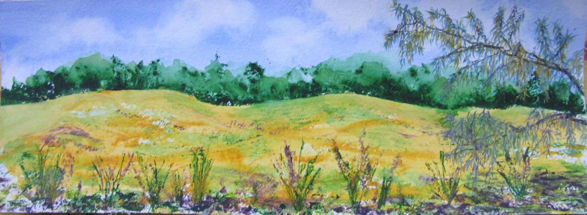 Port Meadow High Summer B - framed watercolour (image 24 x 66cm ) - £180 (£300 for a pair)