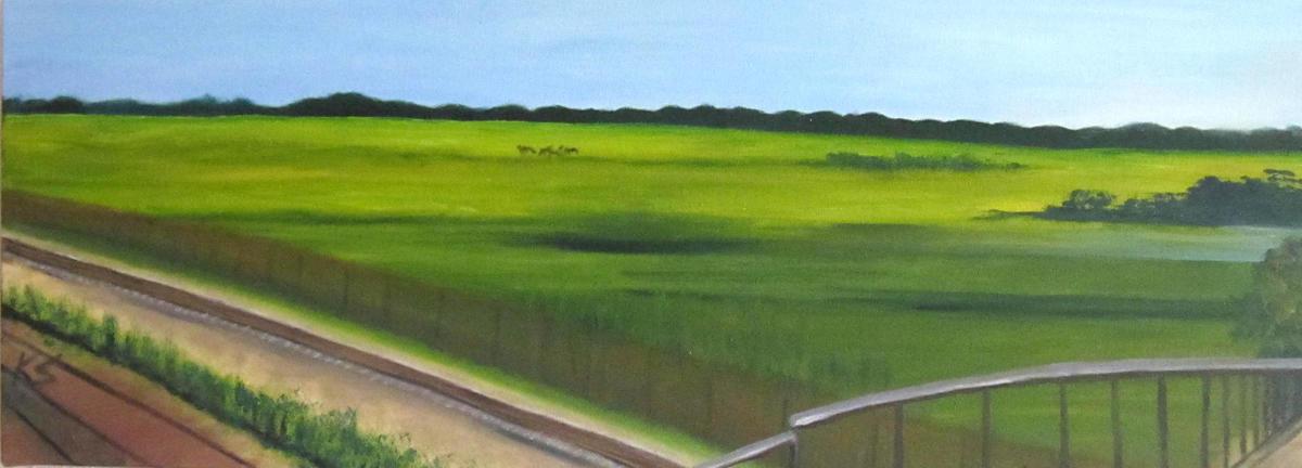 Port Meadow from Godstow Road railway bridge - Oil on box canvas 30 x 80 cm  - £280