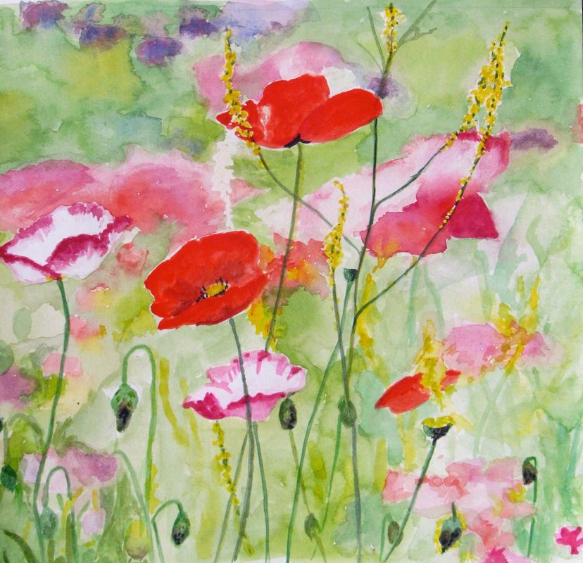 """""""Poppies"""", watercolour, SOLD. Available as a limited edition print, £20"""