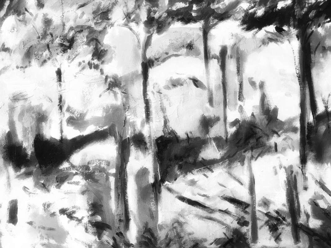 In the woods. Charcoal. 2019