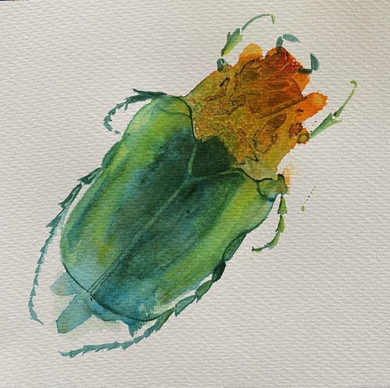 Bug, watercolour, £95
