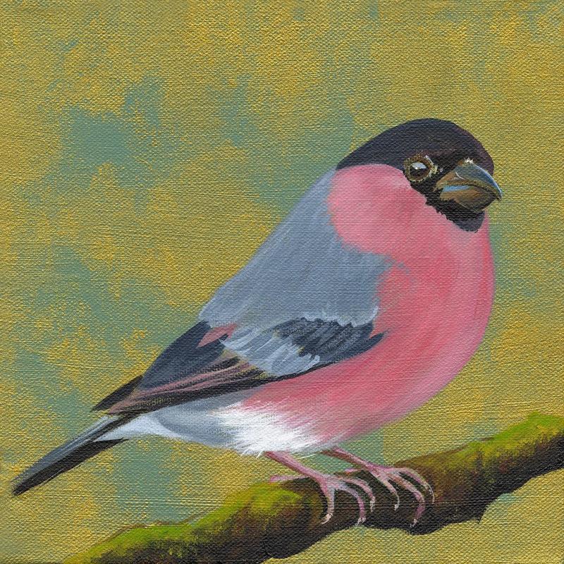 Bullfinch original painting 20x20cm