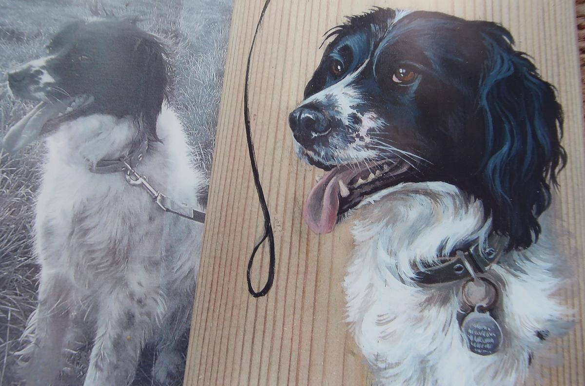 Millies portrait for her lead hook.