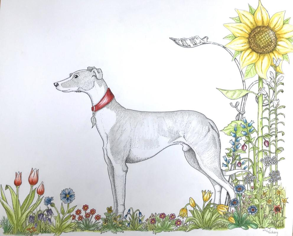 Sunflower hound, a slightly different take, using pointillism penwork and Watercolour, I love it's more illustrative quality. Available professionally mounted and ready to frame. Measures 510mm by 475mm and is available for £250