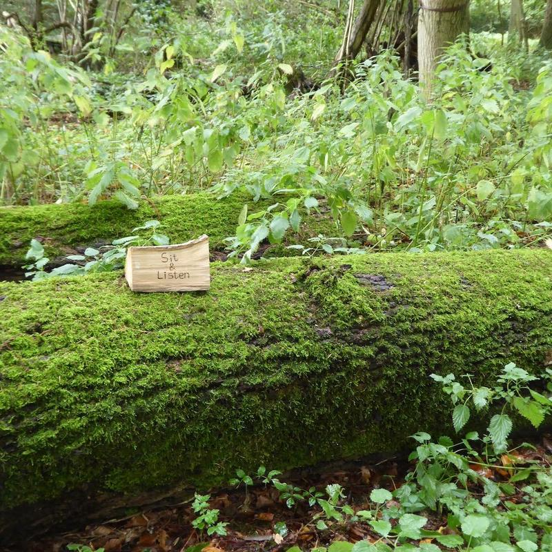 Sit and listen on a log, Wilcote Studios.
