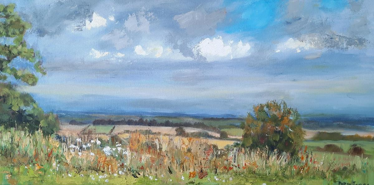 From Court Hill   oil on canvas  30 x 60 cm  £ 120