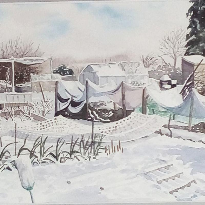 My painting of the allotments in Watlington from my photo size 46 by 39cm