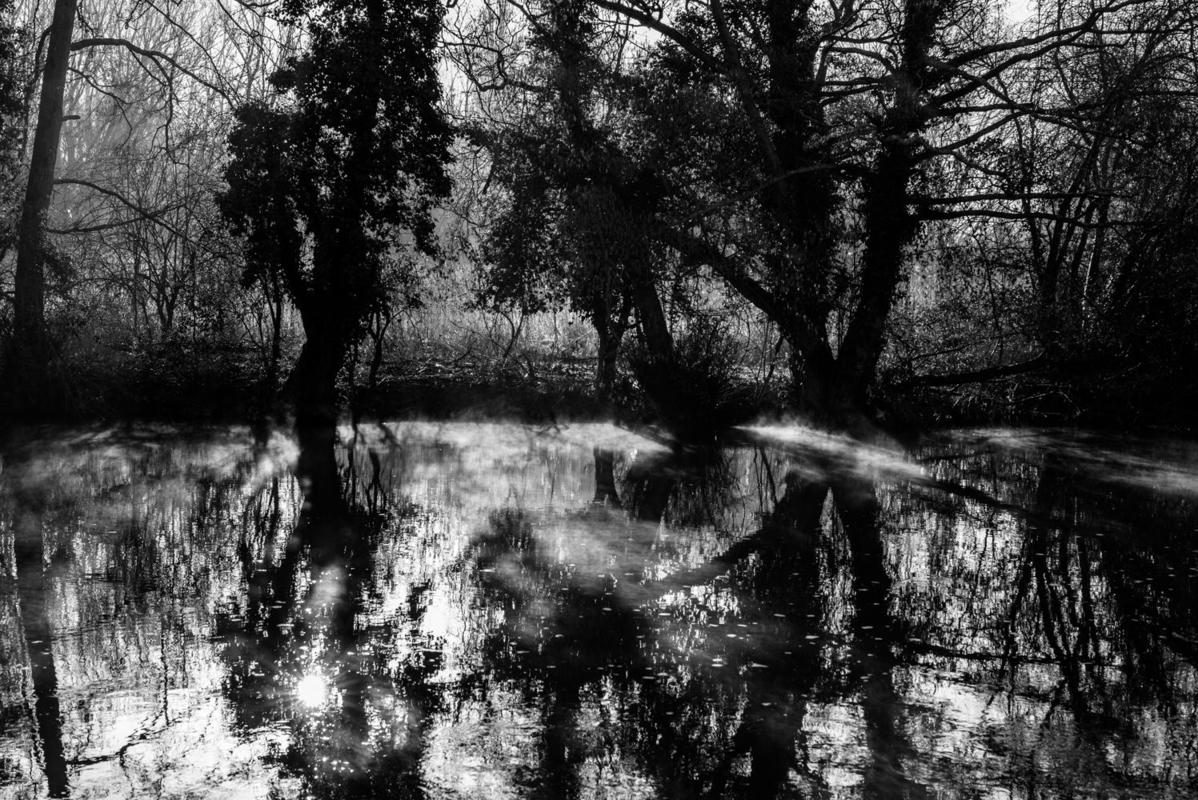 Landscapes of the Heart. Personal images of local places during a global pandemic. Downstream of Iffley Lock.