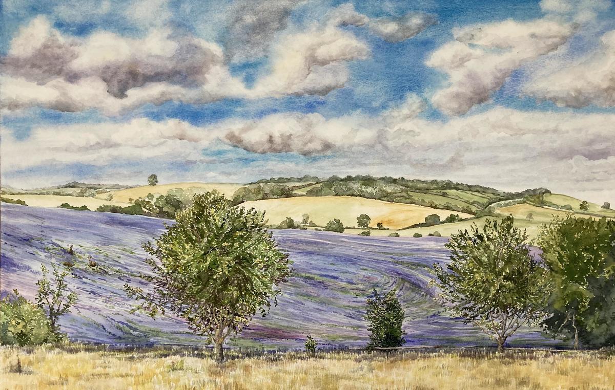 Swalcliffe Borage.   Watercolour.  71 x 53 cms. Framed.  £425