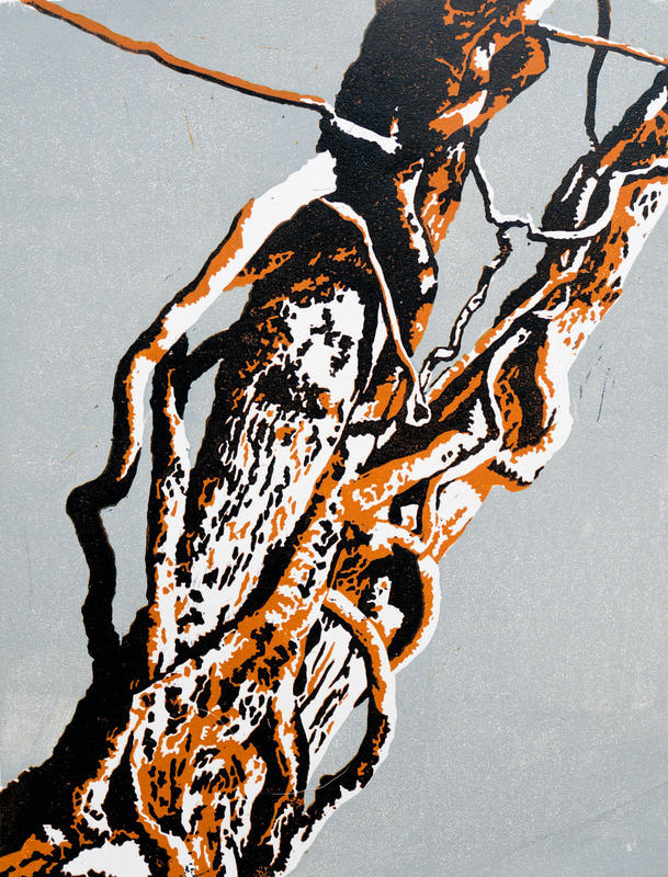 Embattled Tree.  A linocut of part of an untended hedge on a dog walk