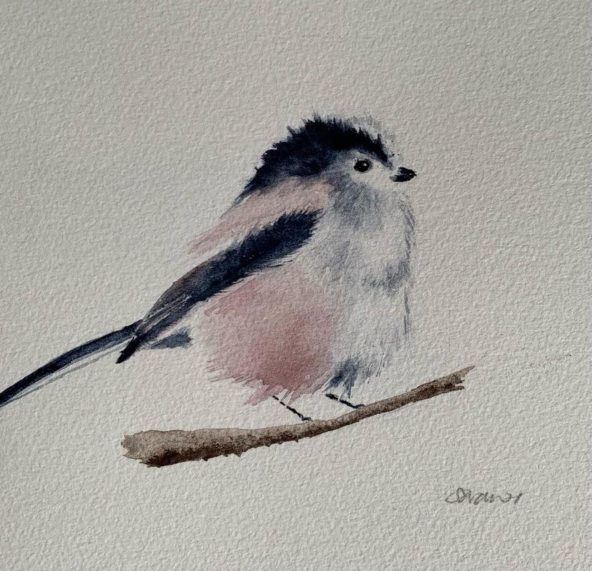 Long tailed tit * Watercolour on paper