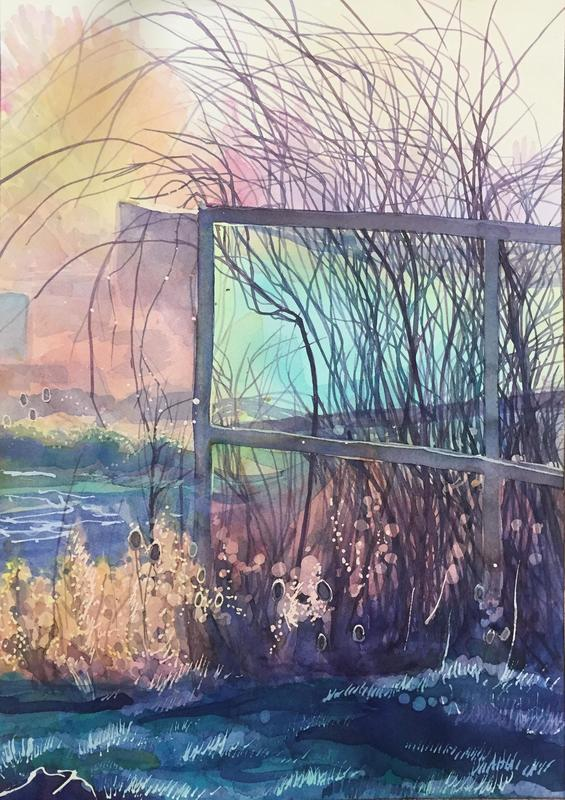 Lorna's Fruit Cage, large watercolour