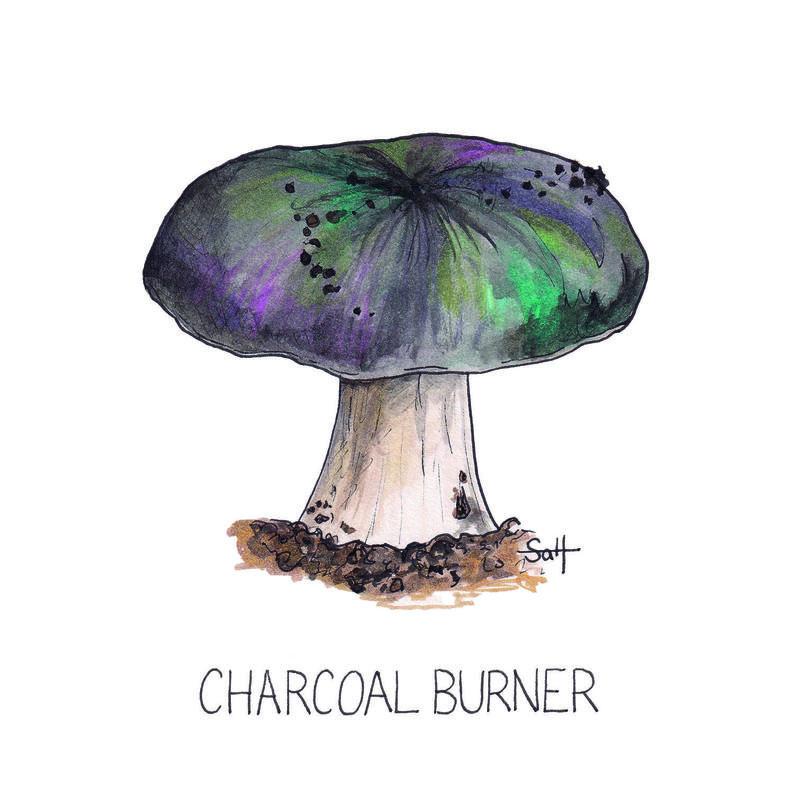 Pen & Ink Charcoal Burner Illustration - 15cm x 15cm - £25 (unframed) - £32.50 (framed)