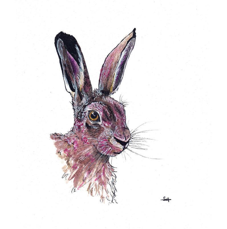 Pen & Ink Hare Illustration - 21cm x 30cm - £32.50 (unframed) or £40 (framed)