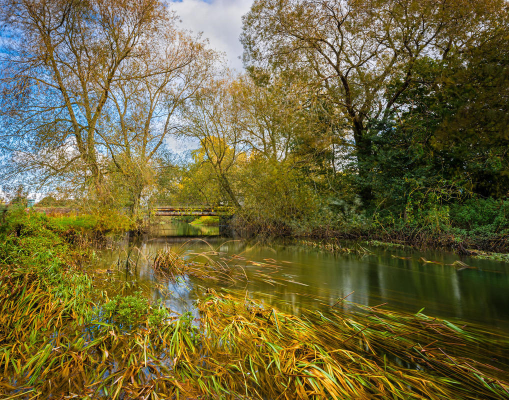 Autumn landscape of the River Thame in Oxfordshire.