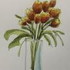 Tulips to the right Original Watercolour £40.00